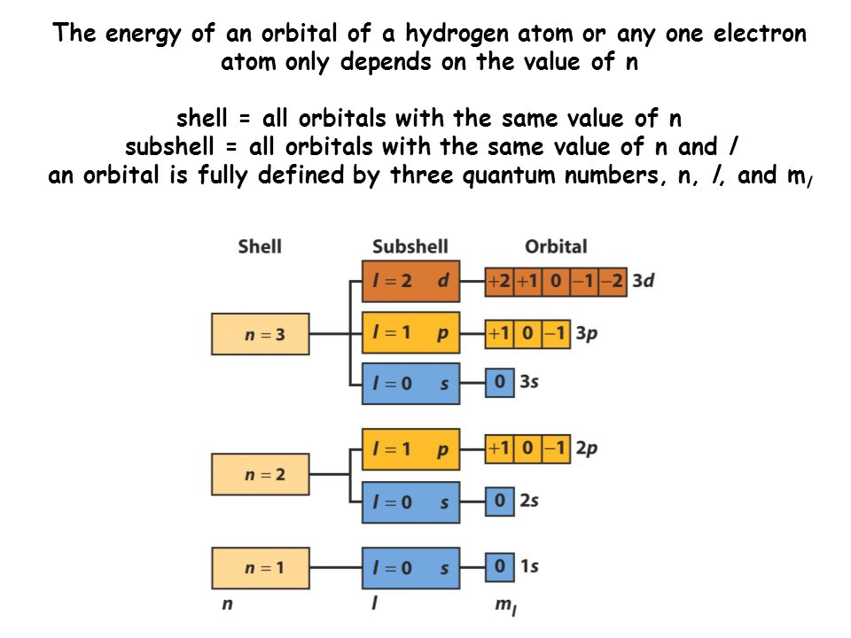 The energy of an orbital of a hydrogen atom or any one electron atom only depends on the value of n shell = all orbitals with the same value of n subshell = all orbitals with the same value of n and l an orbital is fully defined by three quantum numbers, n, l, and m l