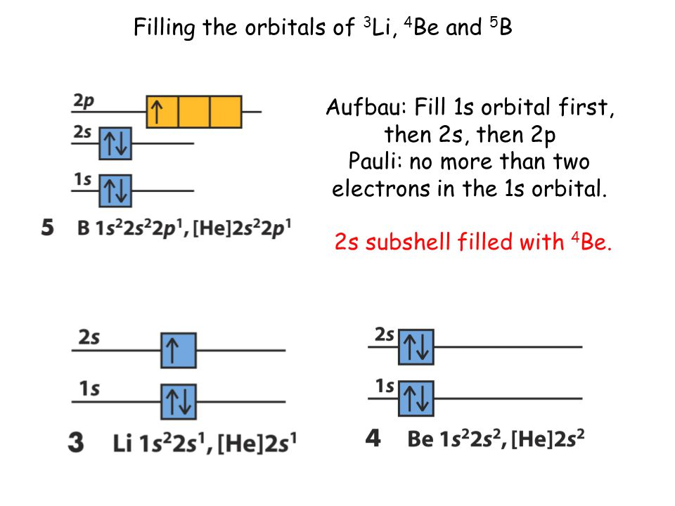 Filling the orbitals of 3 Li, 4 Be and 5 B Aufbau: Fill 1s orbital first, then 2s, then 2p Pauli: no more than two electrons in the 1s orbital.