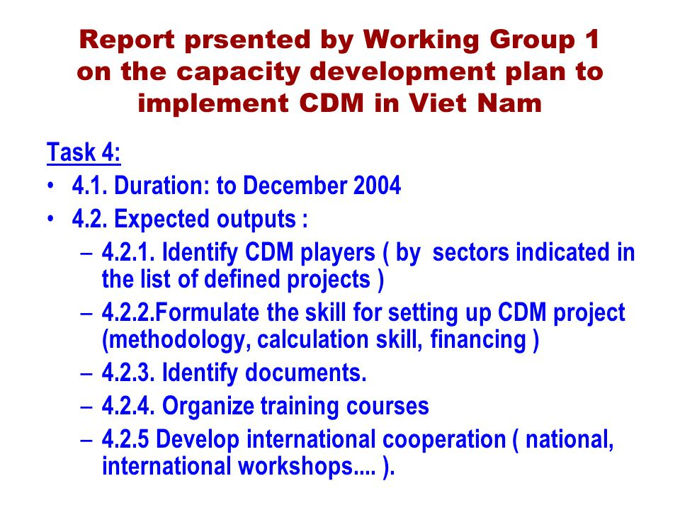Report prsented by Working Group 1 on the capacity development plan to implement CDM in Viet Nam Task 4: 4.1.