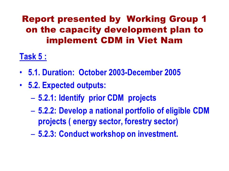 Report presented by Working Group 1 on the capacity development plan to implement CDM in Viet Nam Task 5 : 5.1.