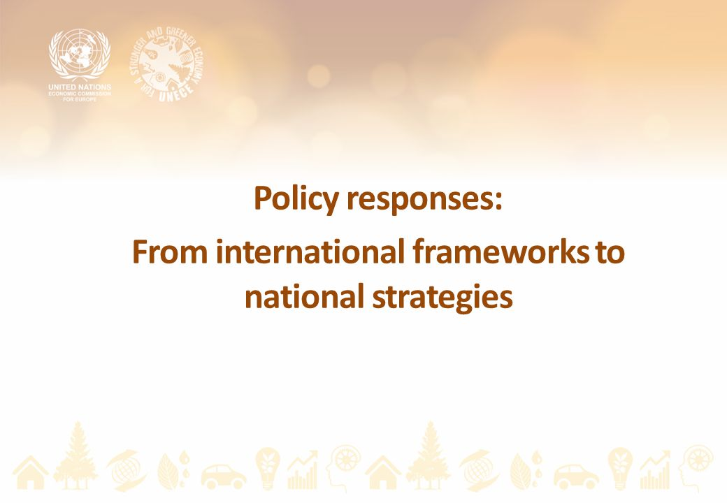 Policy responses: From international frameworks to national strategies