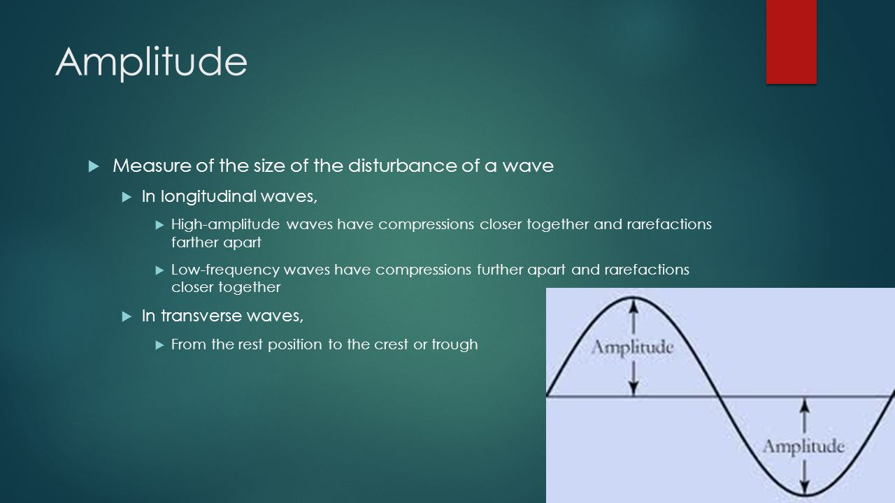 Amplitude  Measure of the size of the disturbance of a wave  In longitudinal waves,  High-amplitude waves have compressions closer together and rarefactions farther apart  Low-frequency waves have compressions further apart and rarefactions closer together  In transverse waves,  From the rest position to the crest or trough