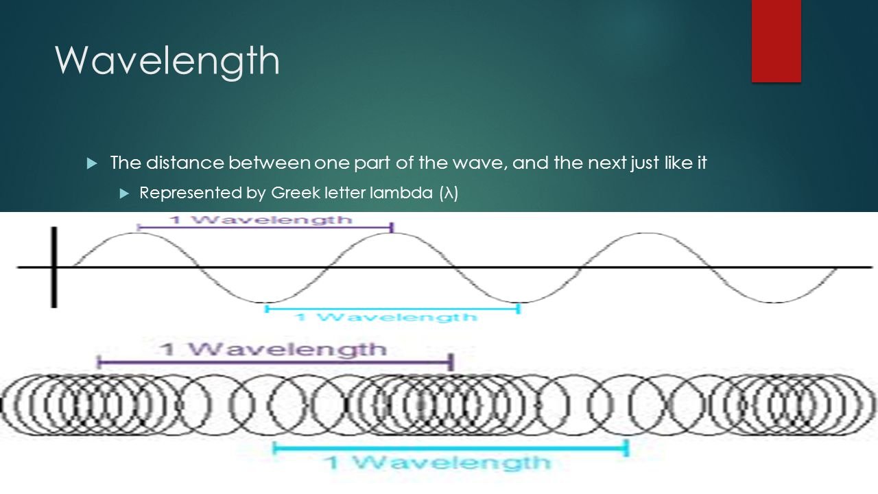 Wavelength  The distance between one part of the wave, and the next just like it  Represented by Greek letter lambda (λ)