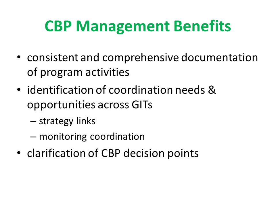 CBP Management Benefits consistent and comprehensive documentation of program activities identification of coordination needs & opportunities across GITs – strategy links – monitoring coordination clarification of CBP decision points