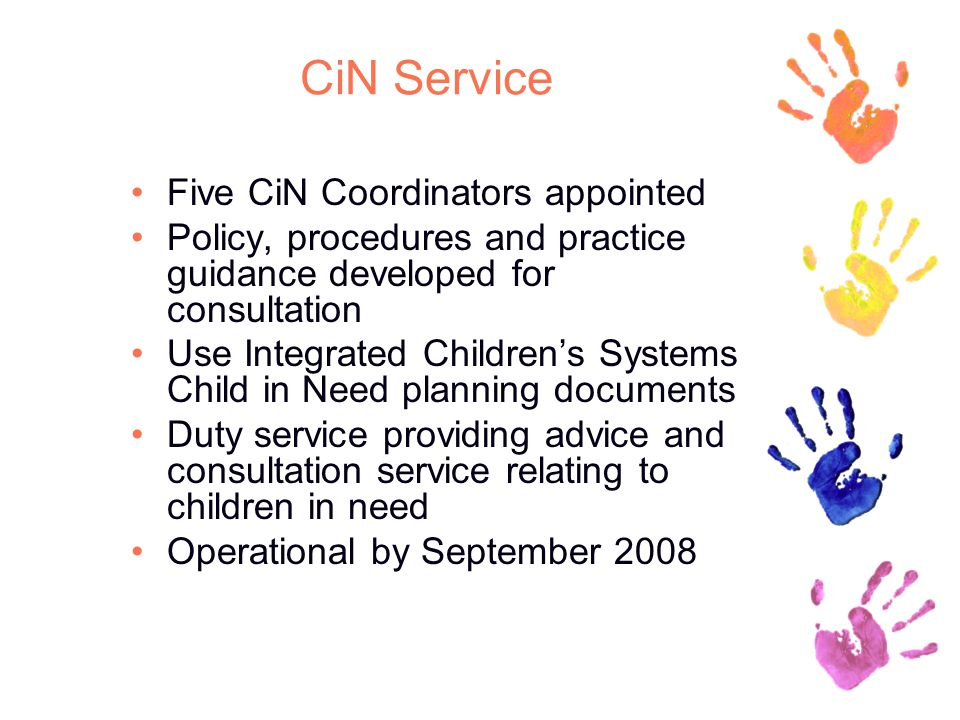 CiN Service Five CiN Coordinators appointed Policy, procedures and practice guidance developed for consultation Use Integrated Children's Systems Child in Need planning documents Duty service providing advice and consultation service relating to children in need Operational by September 2008