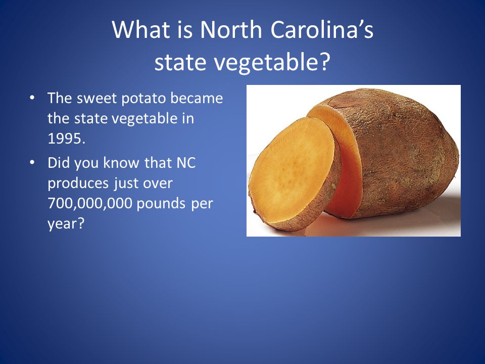North Carolina Symbols What Is North Carolinas State Drink Milk