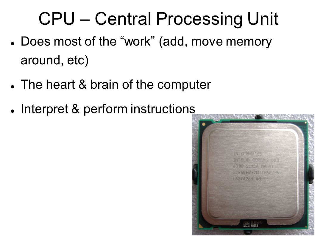 CPU – Central Processing Unit Does most of the work (add, move memory around, etc)‏ The heart & brain of the computer Interpret & perform instructions