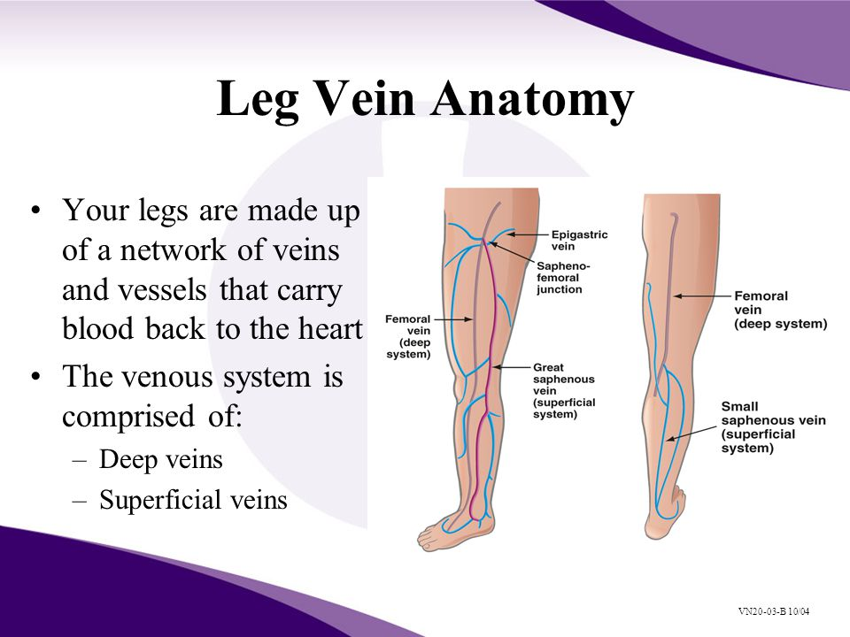 Venous Reflux Disease And Current Treatment Modalities Vn20 03 B 10