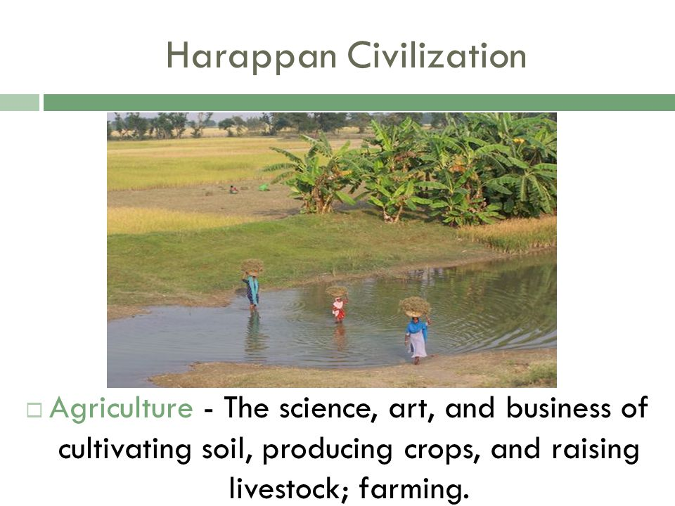 agriculture of harappan civilization