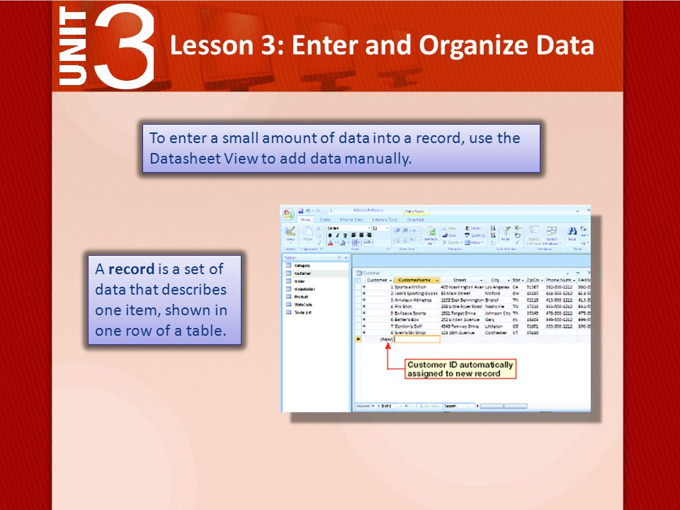Lesson 3: Enter and Organize Data To enter a small amount of data into a record, use the Datasheet View to add data manually.