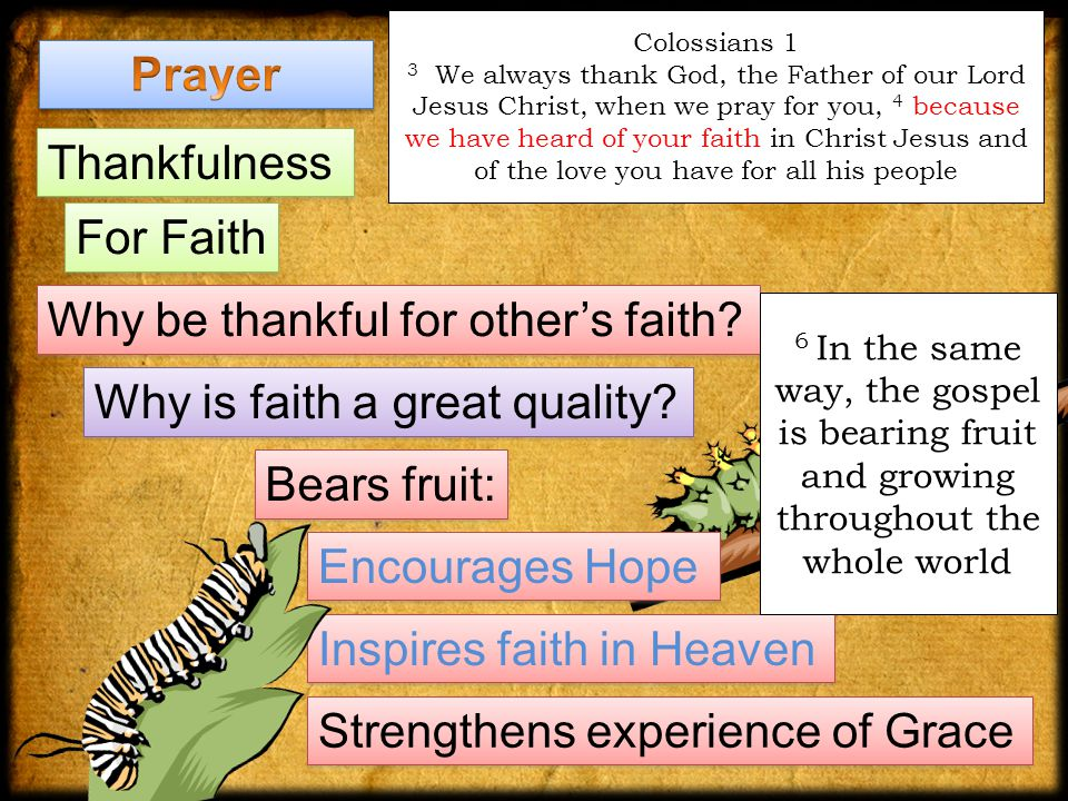 Inspires faith in Heaven Colossians 1 3 We always thank God, the Father of our Lord Jesus Christ, when we pray for you, 4 because we have heard of your faith in Christ Jesus and of the love you have for all his people Thankfulness For Faith Why be thankful for other's faith.
