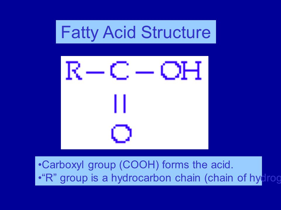 AP Biology Fat subunits  Structure:  glycerol (3C alcohol) + fatty acid dehydration synthesis  fatty acid = long tail with COOH group at head