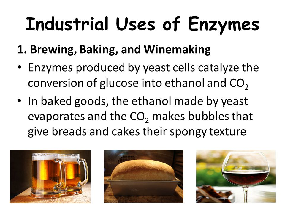 Industrial Uses of Enzymes 1.