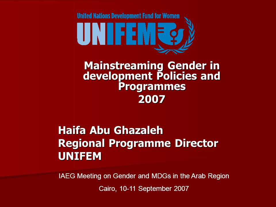 Mainstreaming Gender in development Policies and Programmes 2007 Haifa Abu Ghazaleh Regional Programme Director UNIFEM IAEG Meeting on Gender and MDGs in the Arab Region Cairo, September 2007