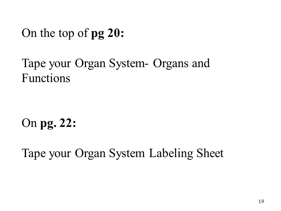 19 On the top of pg 20: Tape your Organ System- Organs and Functions On pg.