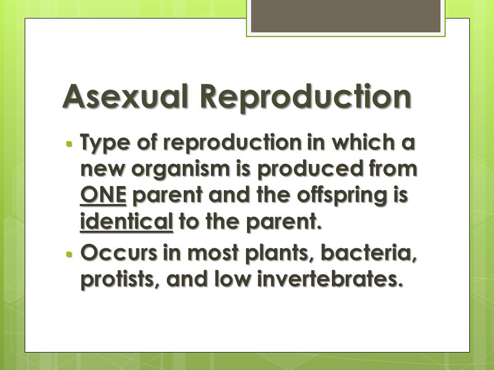 Disadvantages of asexual reproduction in bacteria occurs