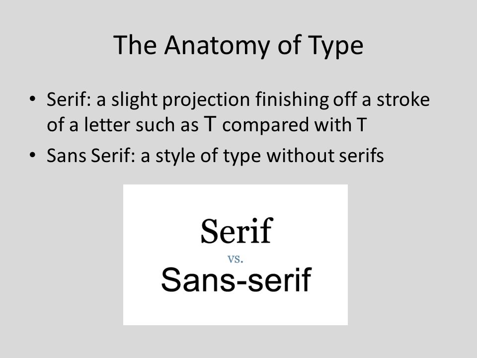 The Elements of Typography. The Anatomy of Type Baseline: The ...
