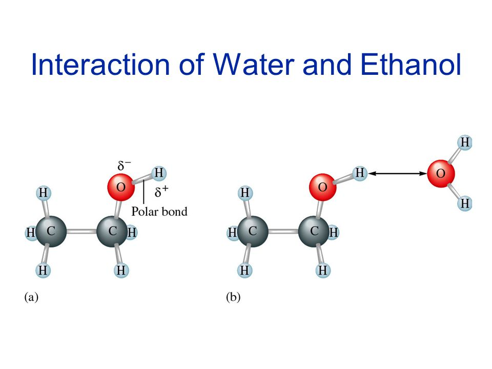 Interaction of Water and Ethanol