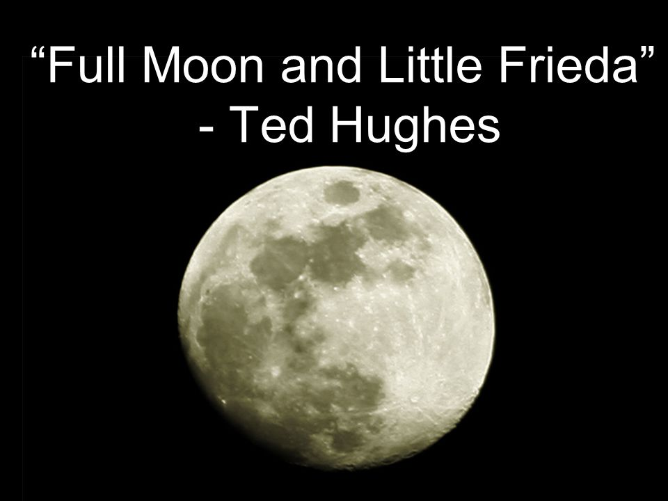 full moon and little frieda by ted hughes summary