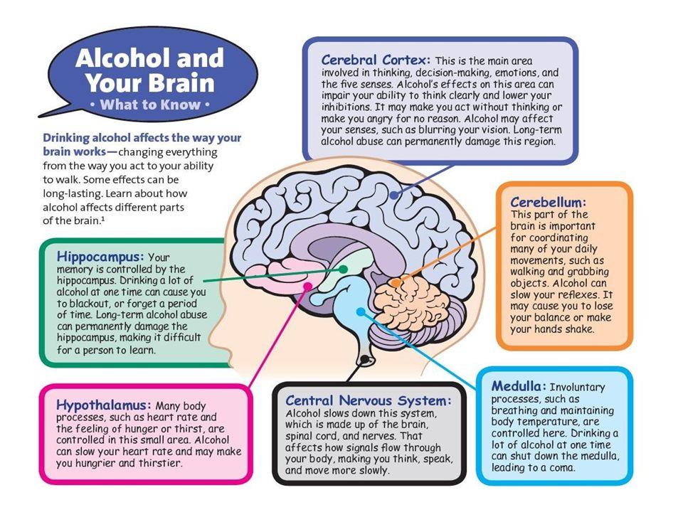 Understanding the dangers of alcohol overdose