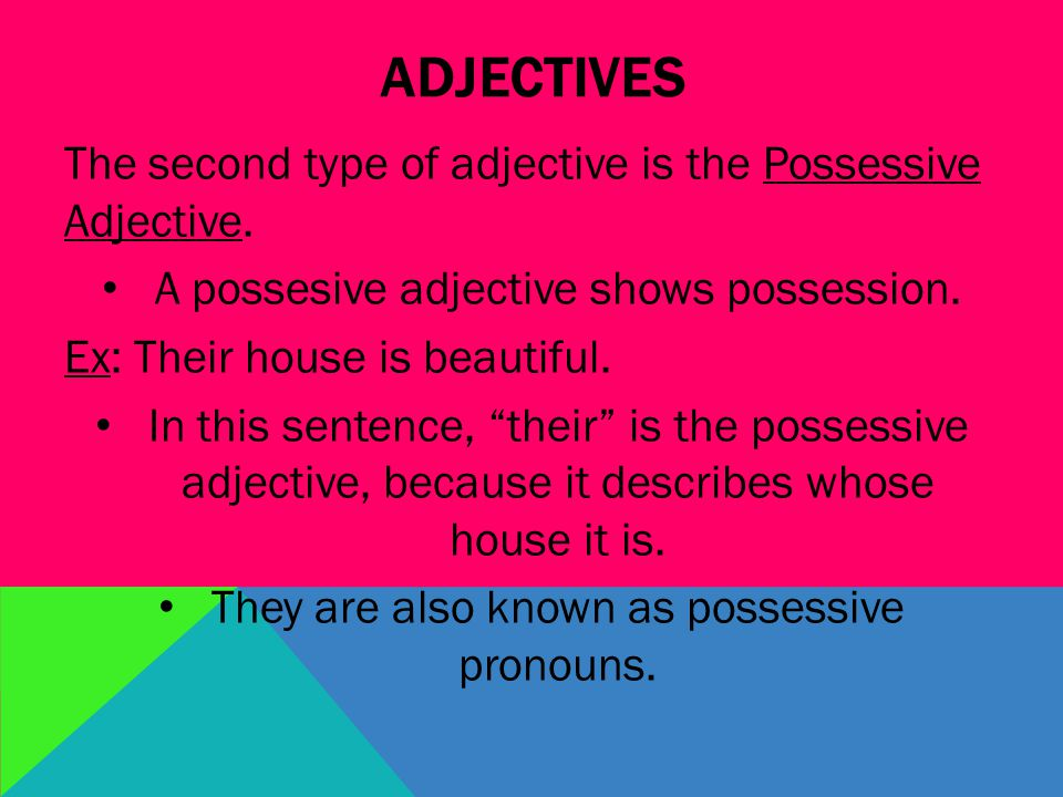 ADJECTIVES The second type of adjective is the Possessive Adjective.