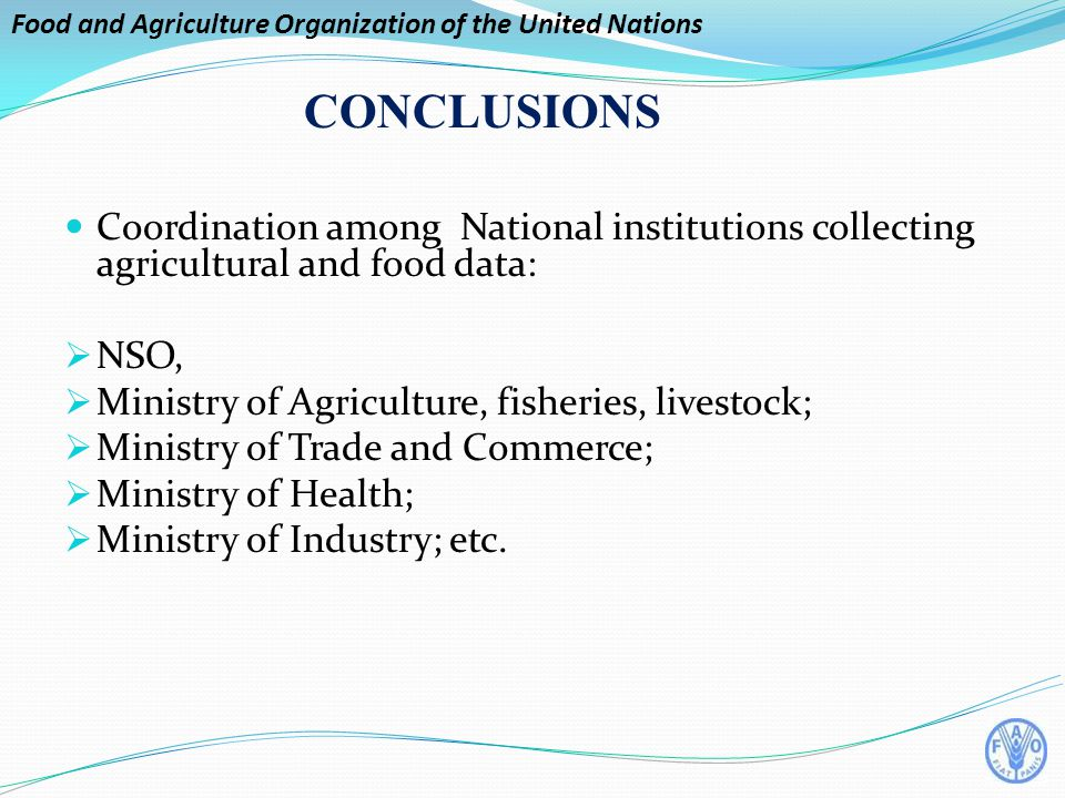 Food and Agriculture Organization of the United Nations CONCLUSIONS Coordination among National institutions collecting agricultural and food data:  NSO,  Ministry of Agriculture, fisheries, livestock;  Ministry of Trade and Commerce;  Ministry of Health;  Ministry of Industry; etc.