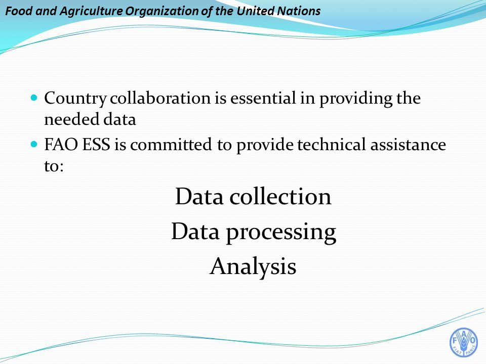 Food and Agriculture Organization of the United Nations Country collaboration is essential in providing the needed data FAO ESS is committed to provide technical assistance to: Data collection Data processing Analysis
