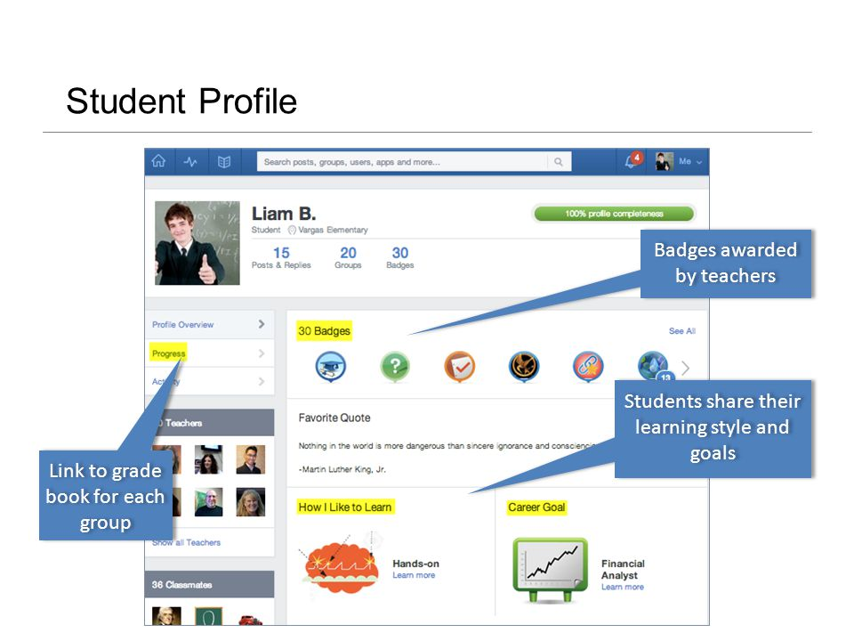 Student Profile Badges awarded by teachers Link to grade book for each group Students share their learning style and goals