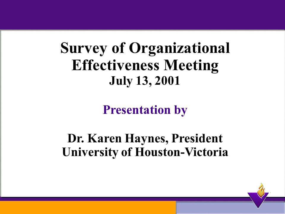Survey of Organizational Effectiveness Meeting July 13, 2001 Presentation by Dr.