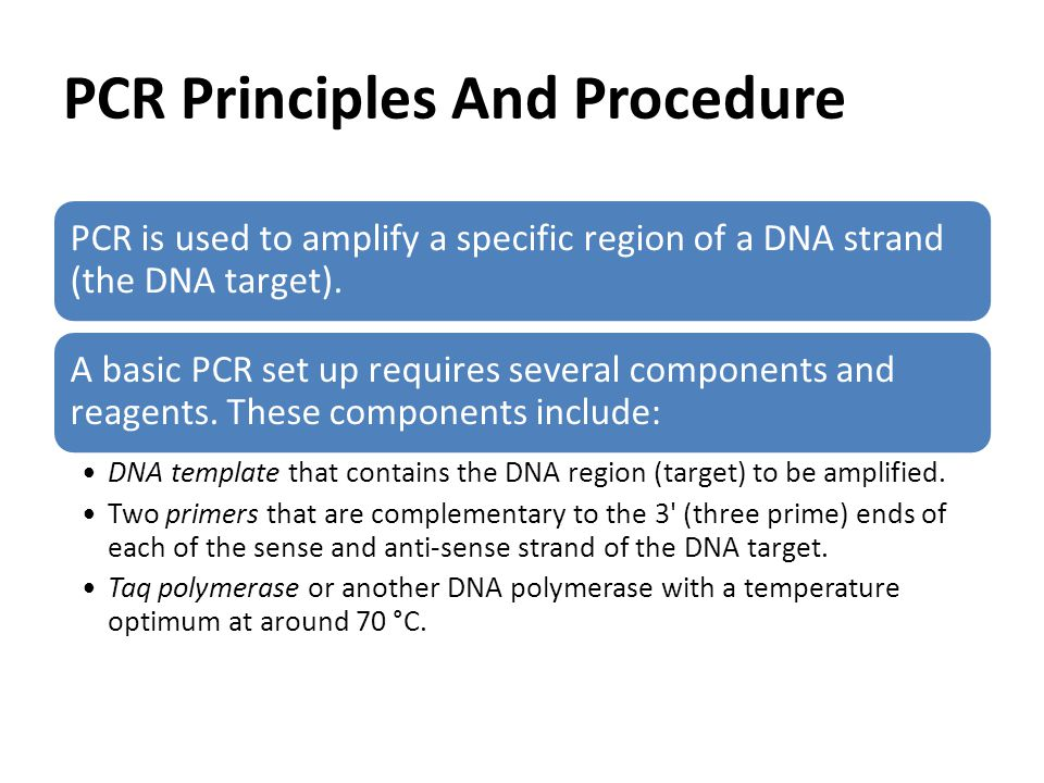 PCR Principles And Procedure PCR is used to amplify a specific region of a DNA strand (the DNA target).