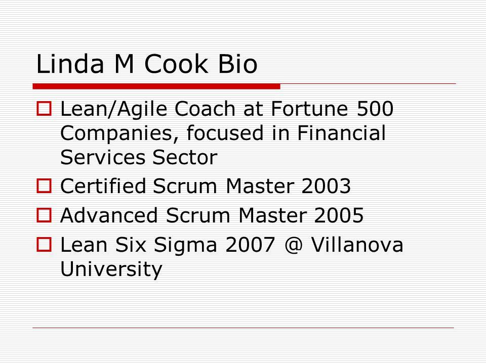 Linda M Cook Bio Leanagile Coach At Fortune 500 Companies