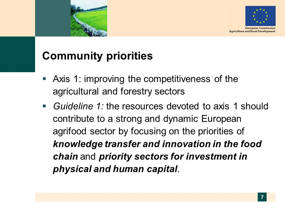 7 Community priorities  Axis 1: improving the competitiveness of the agricultural and forestry sectors  Guideline 1: the resources devoted to axis 1 should contribute to a strong and dynamic European agrifood sector by focusing on the priorities of knowledge transfer and innovation in the food chain and priority sectors for investment in physical and human capital.