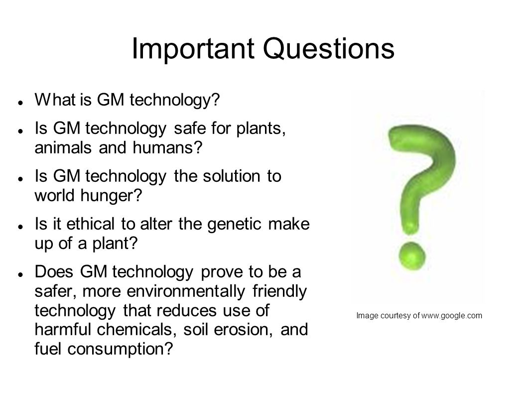 Important Questions What is GM technology. Is GM technology safe for plants, animals and humans.
