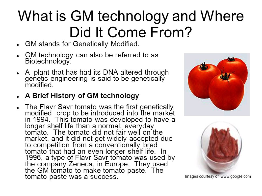 What is GM technology and Where Did It Come From. GM stands for Genetically Modified.