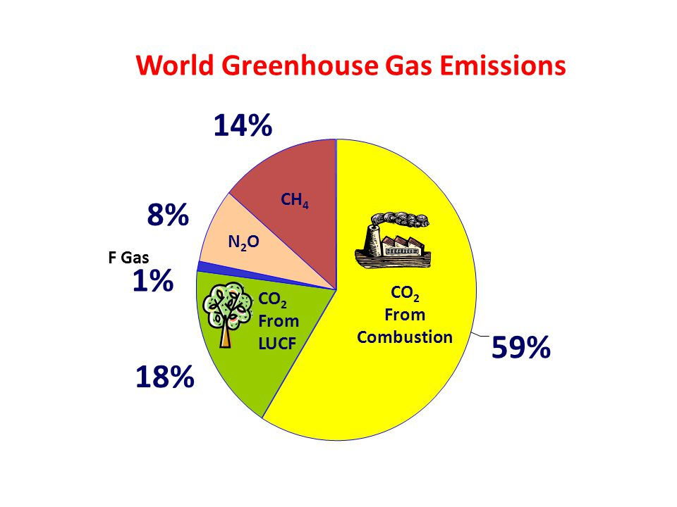 18% 1% 8% 14% 59% World Greenhouse Gas Emissions CH 4 N2ON2O F Gas CO 2 From Combustion CO 2 From LUCF