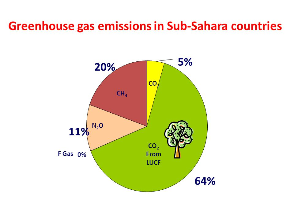64% 0% 11% 20% 5% Mainstreaming CCRM into UNDP Core Activities- RBA RR Cluster Meeting Greenhouse gas emissions in Sub-Sahara countries CH 4 N2ON2O F Gas CO 2 From LUCF