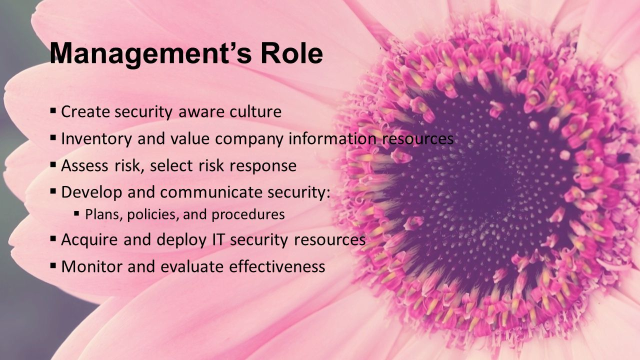 Management's Role  Create security aware culture  Inventory and value company information resources  Assess risk, select risk response  Develop and communicate security:  Plans, policies, and procedures  Acquire and deploy IT security resources  Monitor and evaluate effectiveness