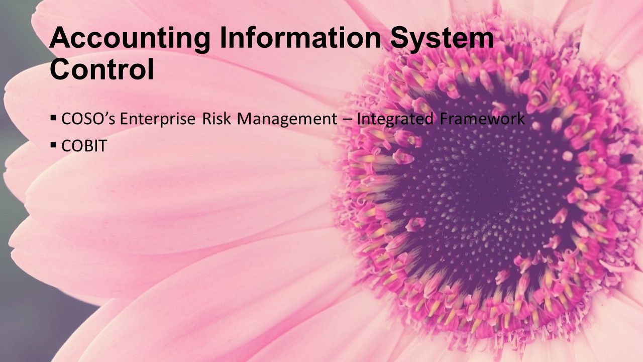 Accounting Information System Control  COSO's Enterprise Risk Management – Integrated Framework  COBIT