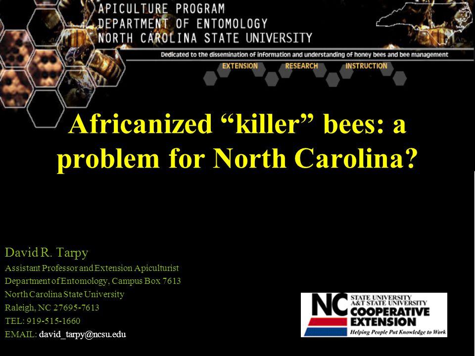 KILLER BEE NC-500 DOWNLOAD DRIVERS