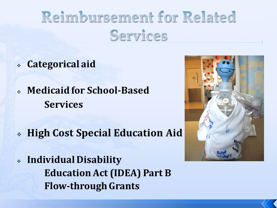  Categorical aid  Medicaid for School-Based Services  High Cost Special Education Aid  Individual Disability Education Act (IDEA) Part B Flow-through Grants