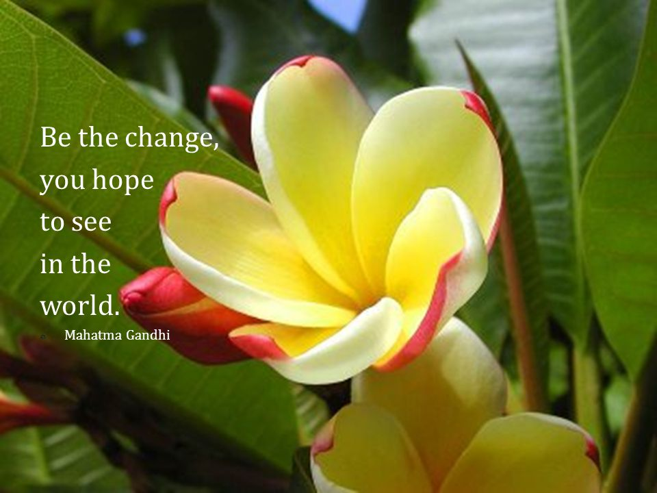 Be the change, you hope to see in the world.  Mahatma Gandhi