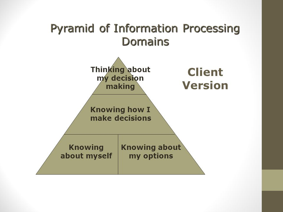 Pyramid of Information Processing Domains Knowing about myself Knowing about my options Knowing how I make decisions Thinking about my decision making Client Version