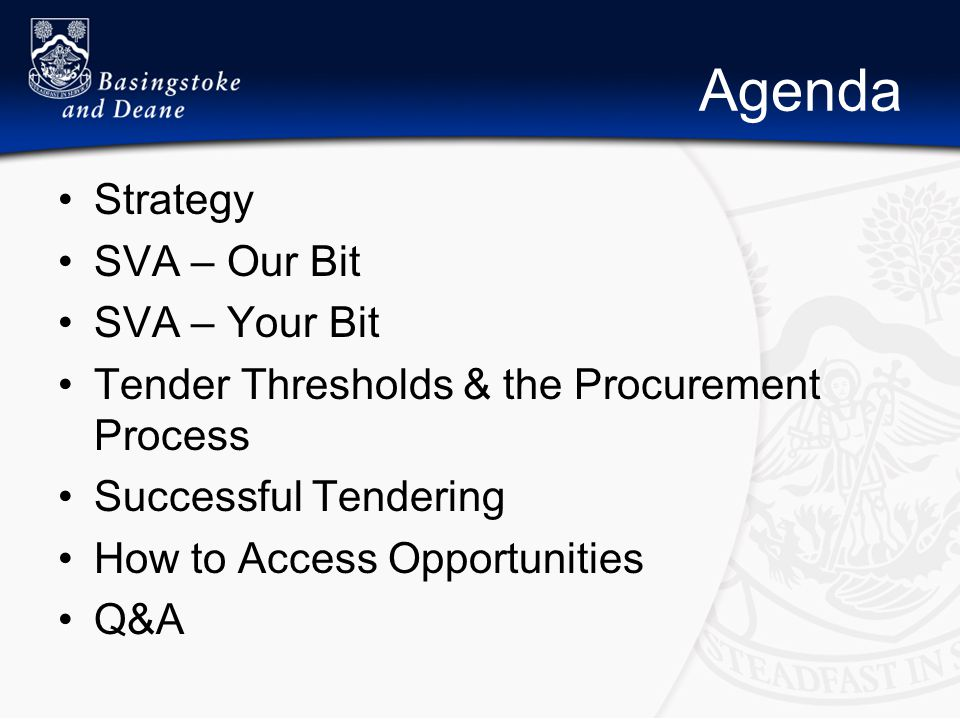 Agenda Strategy SVA – Our Bit SVA – Your Bit Tender Thresholds & the Procurement Process Successful Tendering How to Access Opportunities Q&A