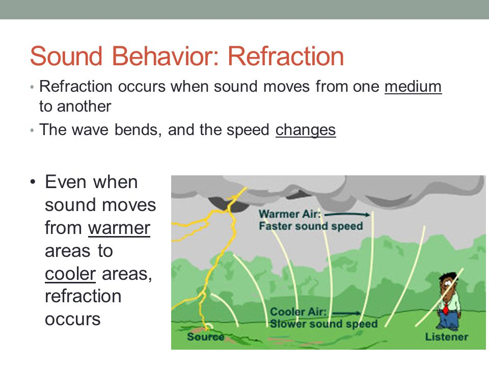 Sound Behaviors: Reflection Reflection of sound results in an echo Sound waves leave a source, travel a distance, and bounce back to the origin Animals, like bats, uses echoes to locate prey Other uses include determining distance between objects, echocardiograms The distance the sound travels to get back to the origin is 2x the distance between the sound source and boundary
