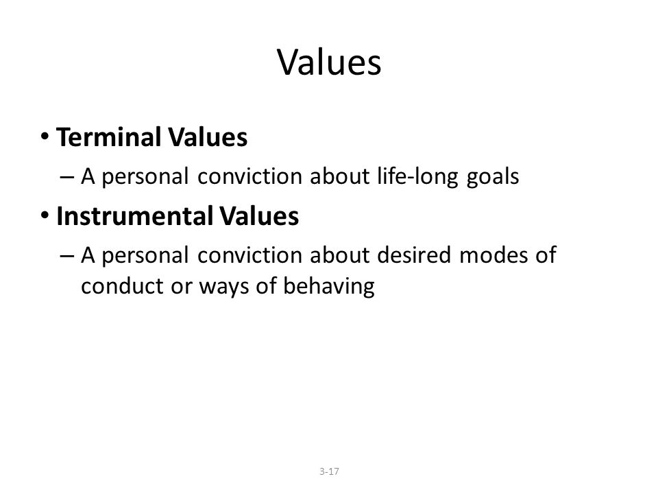 Values Terminal Values – A personal conviction about life-long goals Instrumental Values – A personal conviction about desired modes of conduct or ways of behaving 3-17