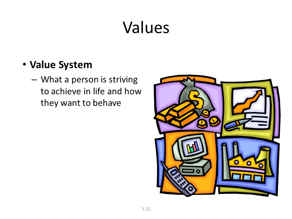 Values Value System – What a person is striving to achieve in life and how they want to behave 3-20