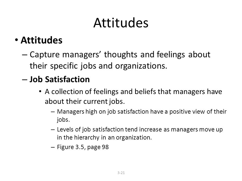 Attitudes – Capture managers' thoughts and feelings about their specific jobs and organizations.