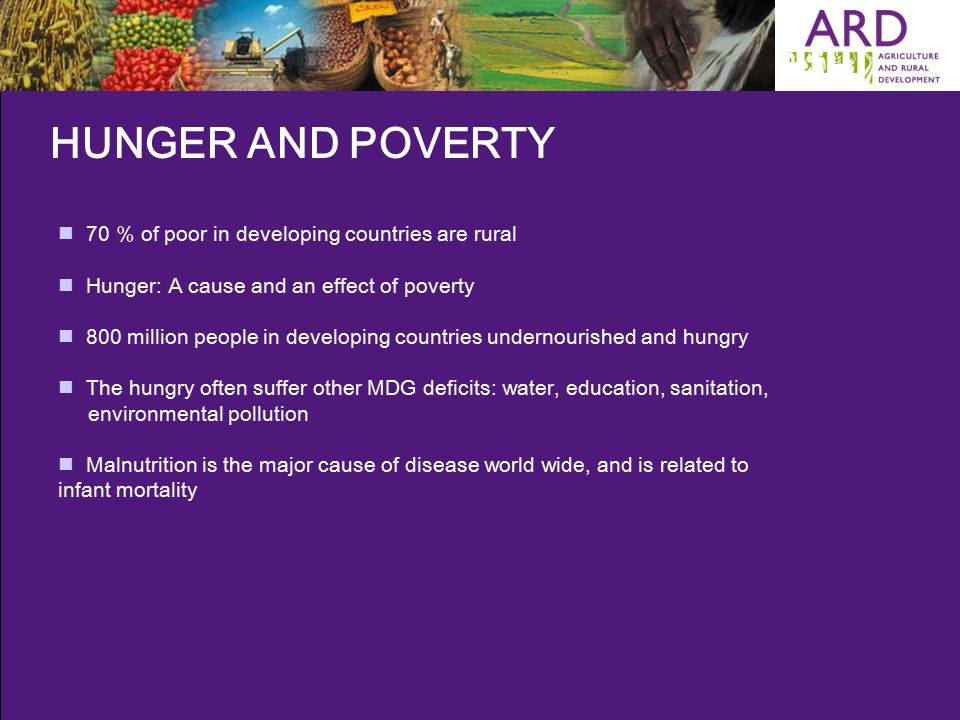HUNGER AND POVERTY 70 % of poor in developing countries are rural Hunger: A cause and an effect of poverty 800 million people in developing countries undernourished and hungry The hungry often suffer other MDG deficits: water, education, sanitation, environmental pollution Malnutrition is the major cause of disease world wide, and is related to infant mortality
