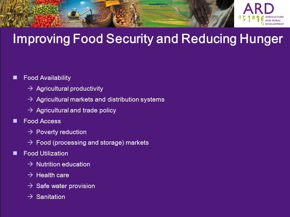 Improving Food Security and Reducing Hunger Food Availability  Agricultural productivity  Agricultural markets and distribution systems  Agricultural and trade policy Food Access  Poverty reduction  Food (processing and storage) markets Food Utilization  Nutrition education  Health care  Safe water provision  Sanitation