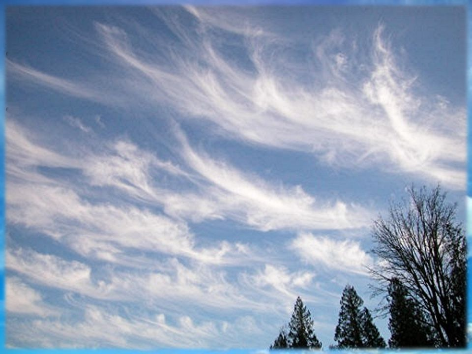 Clouds Stratus clouds form in layers that cover large areas of the sky Cirrus clouds are thin, feathery, white clouds found at high altitudes